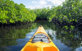 Krabi Kayaking Tour